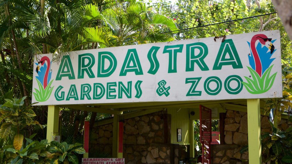 De Ardastra-tuinen, dierentuin