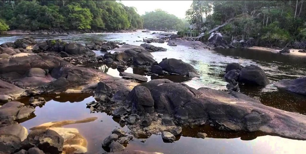 Galibi Coppename natuurgebied