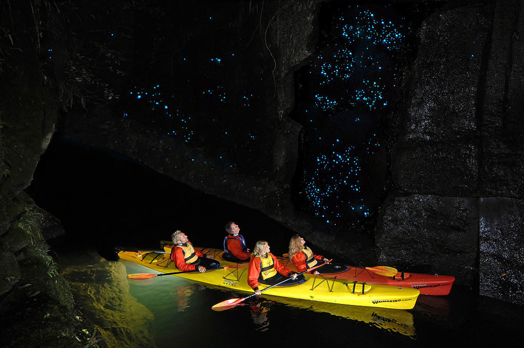 Turks-Caicos-glow-wormen-cruise