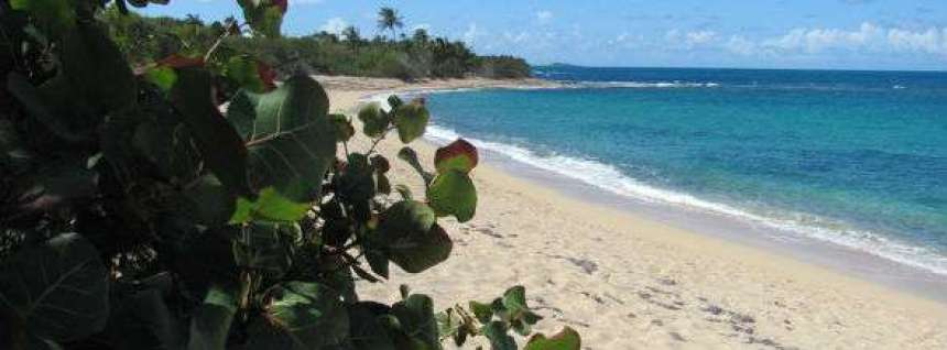 Karayipler'de en gizli plajlarından biri.