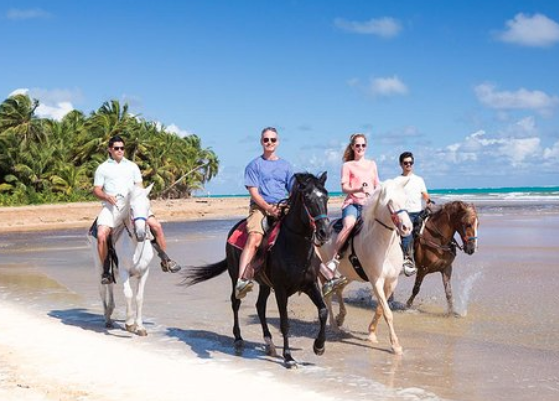Horseback riding in the Caribbean.